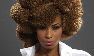 penteados-para-cabelos-crespos-e-afro (40)