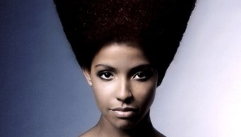 penteados-para-cabelos-crespos-e-afro (8)