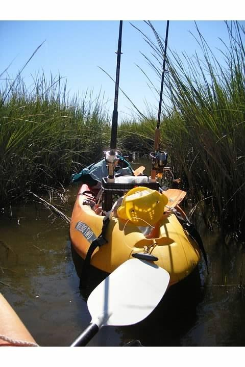 Kayak in the marsh