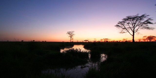 7 Day Group Safari in Tanzania