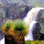 calipuy_santuario_nacional_peru_turismo