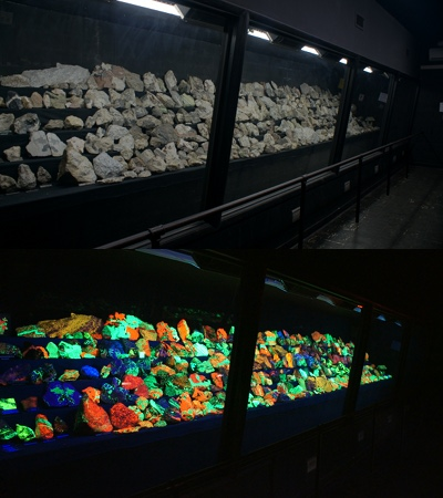 Glowing Rocks and Dazzling Minerals (2/6)