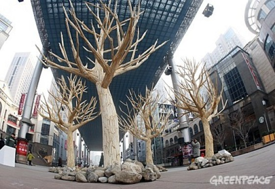 Greenpeace China - Chopstick Forest 5