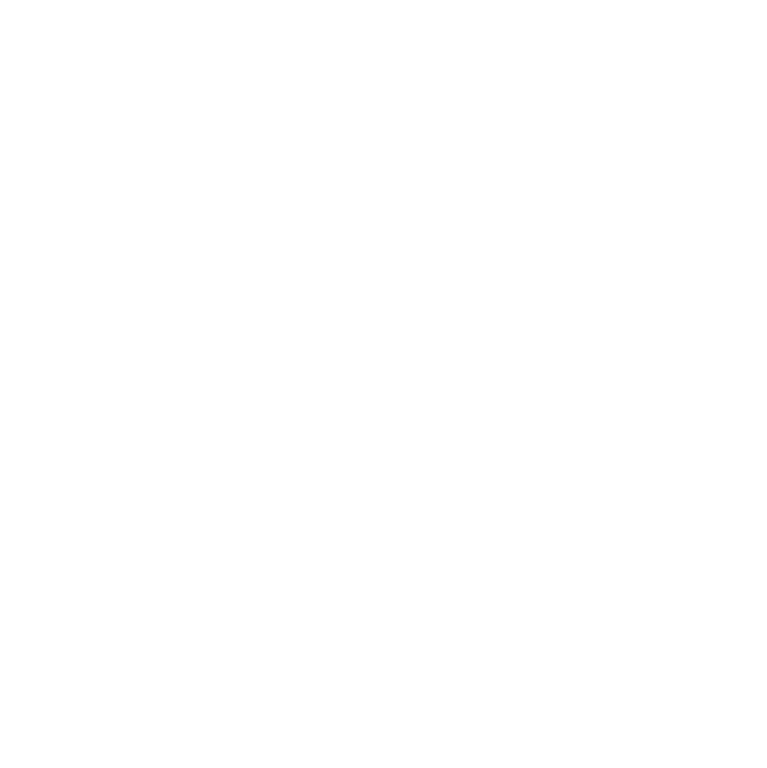 A.I.M.-Company