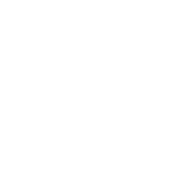 Red Dragon e.V.