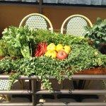 Fresh Produce at Bistro Vivant (Photo Courtesy Bistro Vivant)