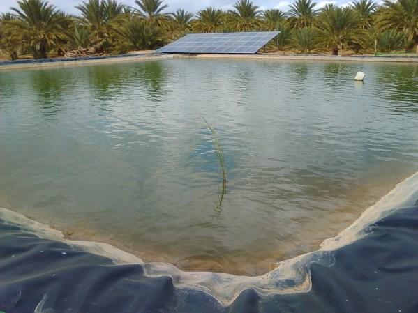 画像①:貯水池