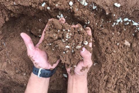 農業における生産性改善を提案!鳥取再資源化研究所、モロッコ国際農業展に出展へ!