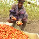 JICA、中小企業の途上国進出を支援!インフラ・農業分野などアフリカ10案件を採択!