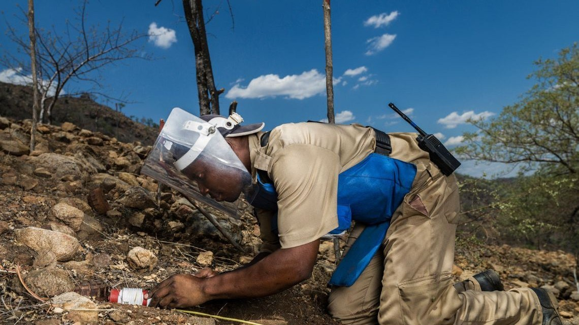 TETE, MOZAMBIQUE, NOVEMBER 2013: A HALO deminer prepares to detonate landmines with an explosive charge as part of demining operations in the Chinzunga hills close to Cabora Bassa, Mozambique, 18 November 2013. The HALO team cleared 15 landmines on this day and detonated them as usual before they left for the day. The average HALO deminer makes $260 a month doing this job, considered a good salary in Mozambique. The HALO deminers in this area are dealing with landmines laid in the 1970's by the Portugese military who were attempting to defend the vital Cabora Bassa Hydro-electric dam, a strategic target for the Frelimo rebels at the time. Today, over 40 years later, these mines still maim and kill the local populace and prevent them utilizing vital agricultural land. This scene was photographed at demining operations close to the HALO Demining camp in the mountains of Chinzunga. Mozambique was one of the most heavily landmined countries in the war, both from its 11 year long War of Libertation as well as its conflicts with both South Africa and Rhodesia for sheltering both the ANC and Mugabe's Zanla freedom fighters. Halo has cleared over 22,700 anti personnel mines and reclaimed of 500, 000 square meters of land for the local populace. HALO runs both mechinical and manual operations. Mozambique is pushing hard to meet its donor obligations to be land-mine free by the end of 2014, under the mandate of the Ottawa convention on the land mine. (Photo by Brent Stirton/Reportage for the ICRC.)