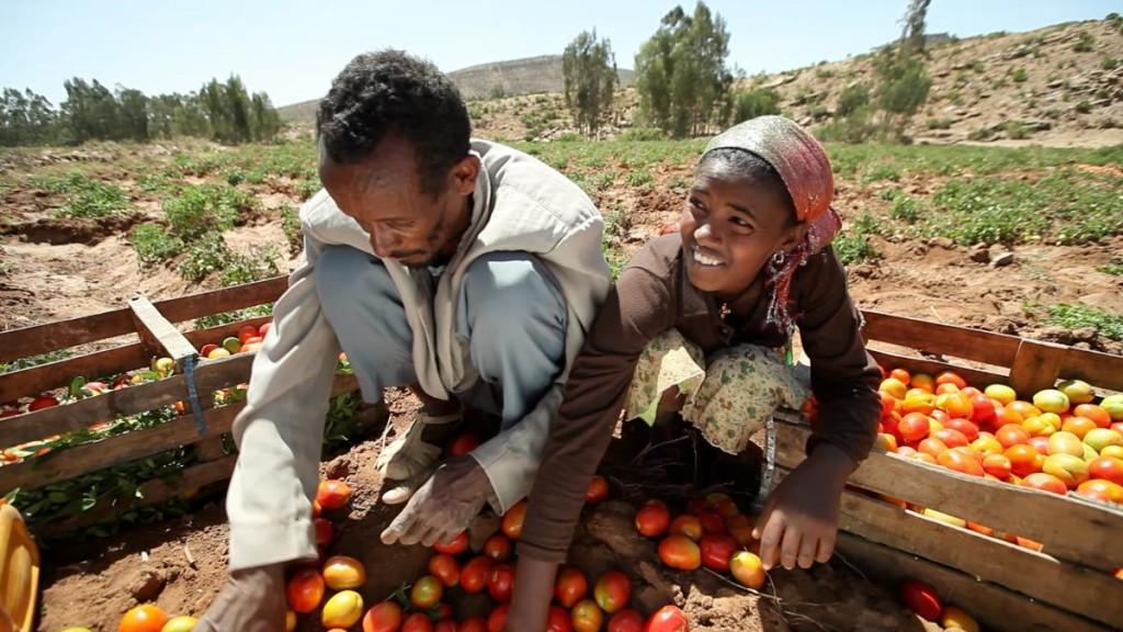 ethiopia-business01-1024x576