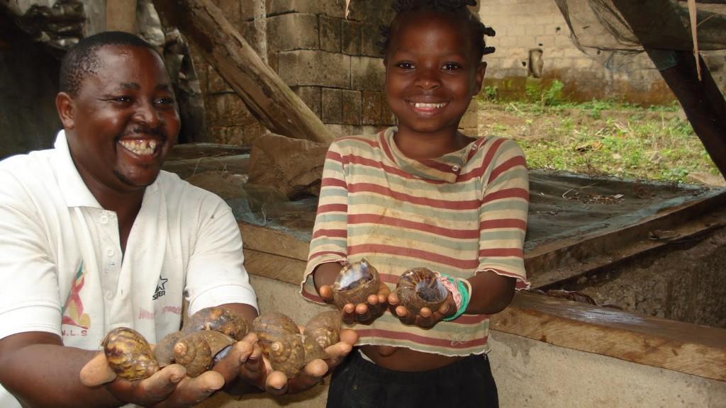 snails-farming-africa-1024x576