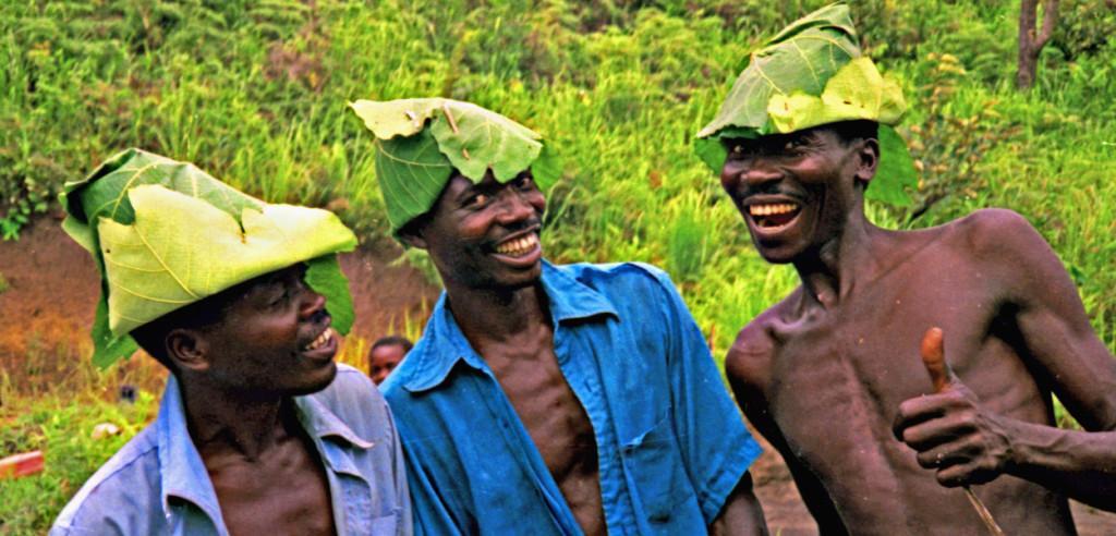 african-exports-tea-1024x492
