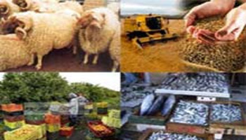 L'Agence de Promotion des investissements agricoles table sur une croissance de 9% des investissements agricoles privés qu'elle approuvera en 2012