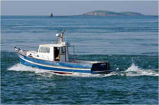 Le quota de pêche de thon rouge accordé à la Tunisie