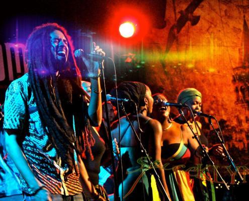 judah tribe 1