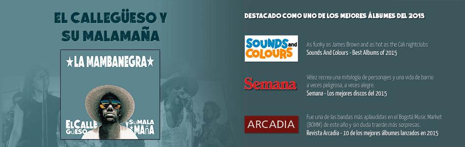 El Callegüeso y su Malamaña : de los mejores discos del 2015
