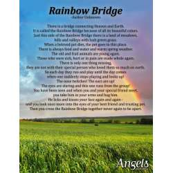Small Crop Of Rainbow Bridge Dog