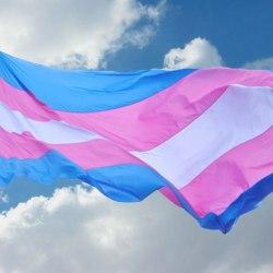 酷新聞:法官判決 跨性別女子失去五個孩子探望權