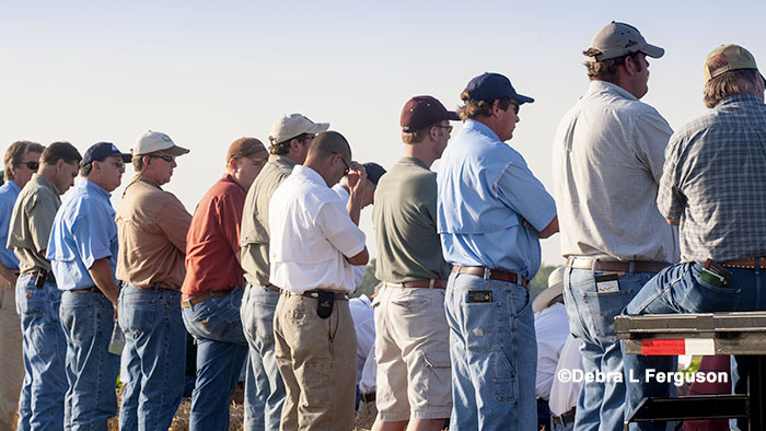 forestry field day mississippi auxin herbicide field day pontotoc june 29 agfax