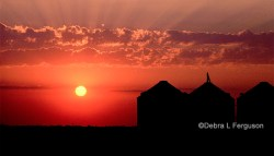 Image copyright of Southern Images and AgFax.com