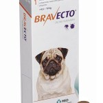 Bravecto // Erfaringer