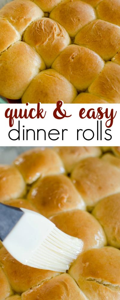 Quick and Easy Dinner Rolls - A Grande Life