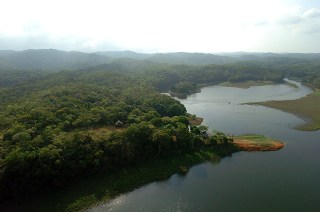 Panama Rainforest Settlement 1