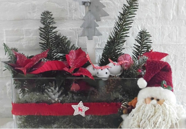 Modern Christmas Display of Christmas Tree Branches And Poinsettas