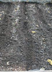 Furros in organic matter