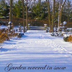 December Gardening To Do List