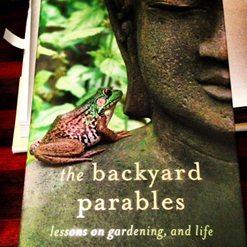 Garden Reading in January