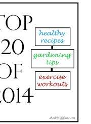 top 20 posts of 2014 ahealthylifeforme.com