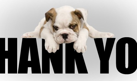 Cute-Dog-Thank-You-Picture