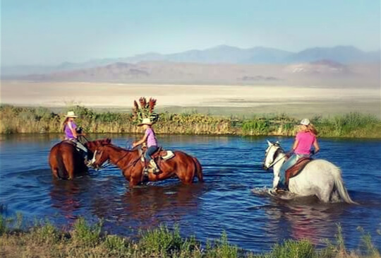 A Horseman's Wife girls swimming with their ranch horses a girl and her horse