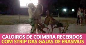 Caloiros de Coimbra Recebidos com Strip de Gajas Erasmus