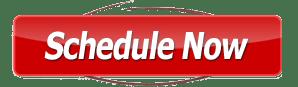CTA-schedule