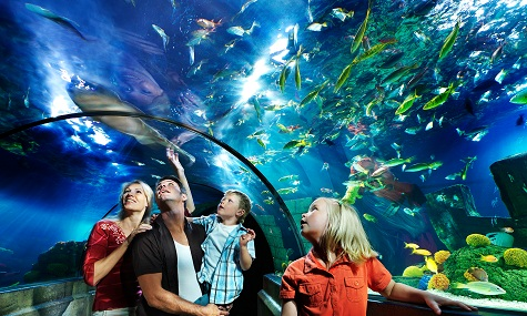 Sea Life Legoland Haitunnel Merlin Entertainments – Die neue Weltmacht der Spassindustrie