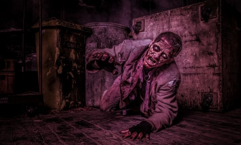 Schreck Check 2013: Horror Nights, Europa Park