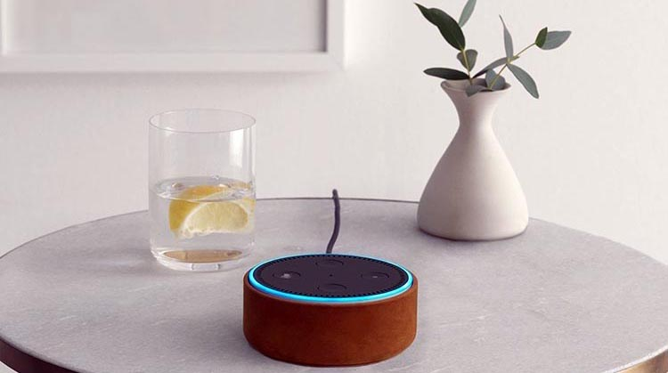 Best Cheap High Tech Gift: The Echo Dot