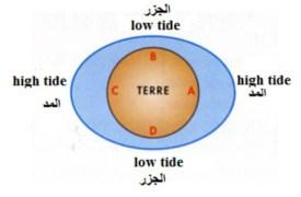 tide1-450x292-jpg.jpg