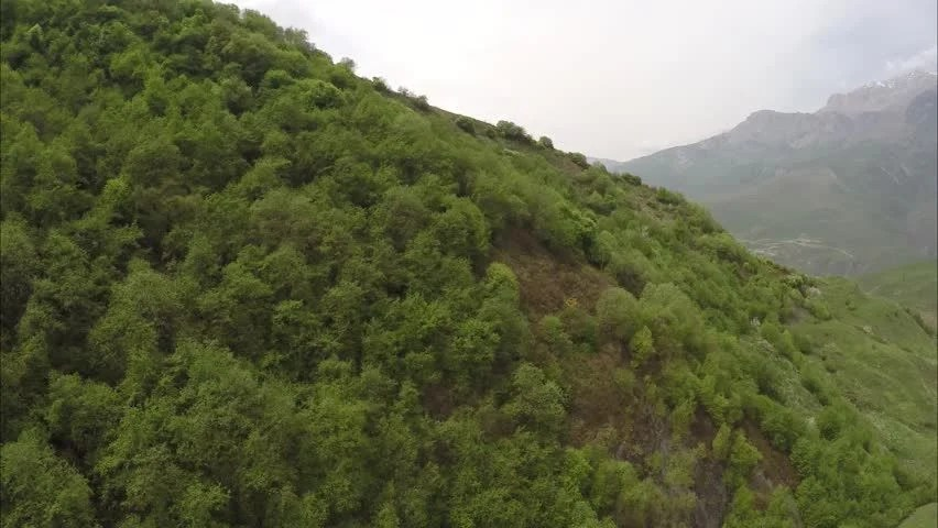 Lush Green Mountain Sides Of The Amazon Rain Forest Stock Footage Video 2561420 | Shutterstock