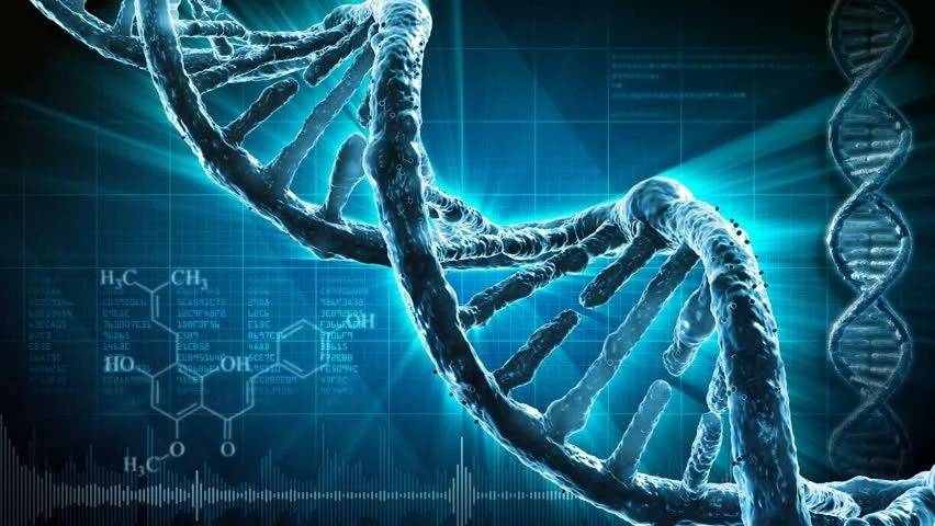 Dna Background Stock Footage Video | Shutterstock