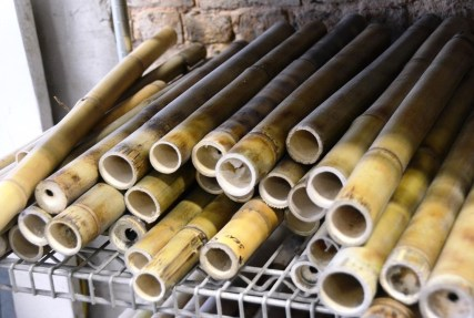 Bamboo was considered a nuisance in Greensboro. Now it's being used to build bicycles and provide jobs. (Karim Shamsi-Basha/Alabama NewsCenter)