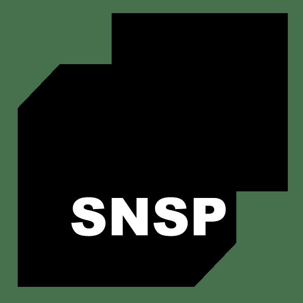 logo_snsp
