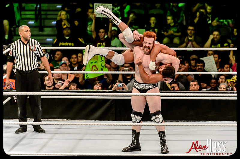 WWE / 2013
