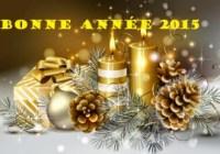 bonne-année 2015