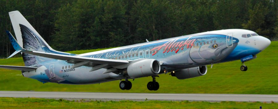 ASA Boeing 737 painted with a salmon on the fuselage. Photo by Rob Stapleton