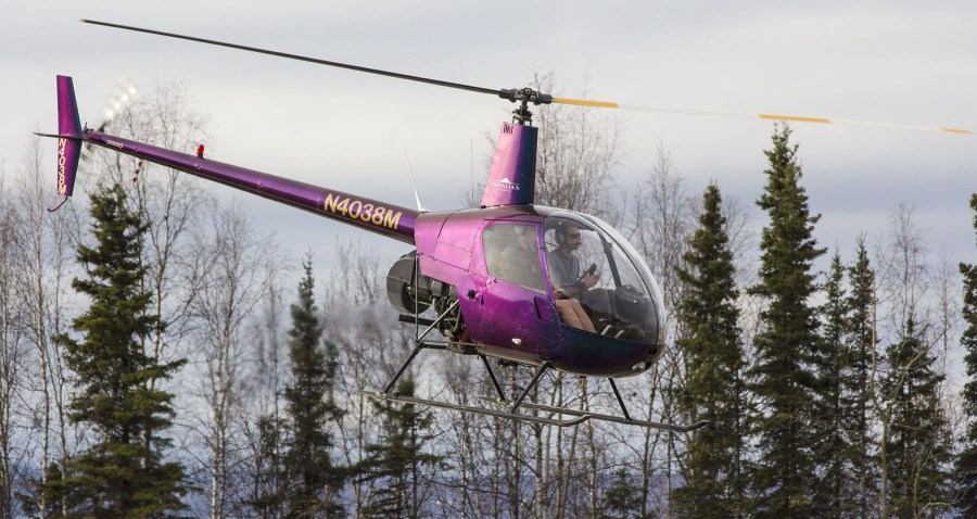 Purple and gold helicopter at PABV. photo by Rob Stapleton/Alaskafoto