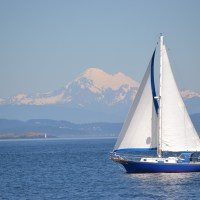 Whale Watching – July 24, 2011